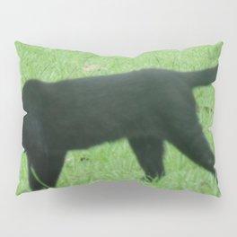 Prowling Around Pillow Sham