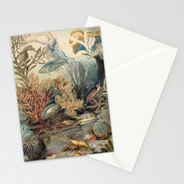 Ocean Life by James M Sommerville 1859 - Reproduction from original under CC0 Stationery Cards
