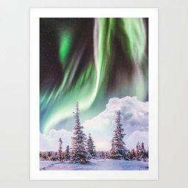 Pine Tree Under Aurora Art Print