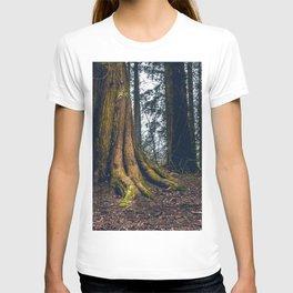 Ireland 69 T-shirt