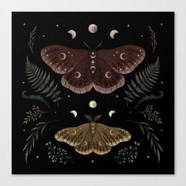 Saturnia Pavonia Canvas Print
