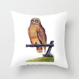 Cayenne Owl Throw Pillow