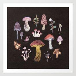 Mushrooms Kunstdrucke