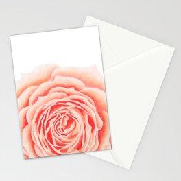 Flower, Big Rose Stationery Cards