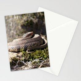 Watercolor Snake, Water Moccasin 16, Merchants Millpond, North Carolina Stationery Cards