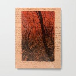 JOURNAL / Among the Trees / 03 Metal Print