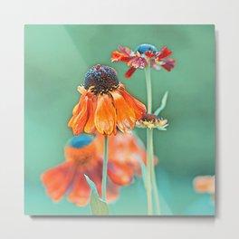 Tender Flowers 23 Metal Print