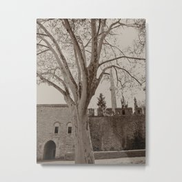 """Gardens (tree) to the NE of Sultan Ahmed Mosque (""""Blue Mosque"""", Istanbul, TURKEY) Metal Print"""