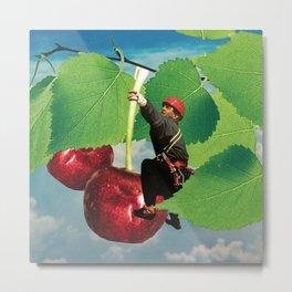 Cherry picking Metal Print