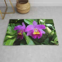 Orchid Witch Rug