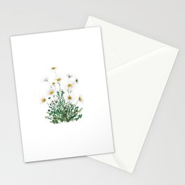 white Margaret daisy watercolor Stationery Cards