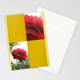 Red Rose with Light 1 Blank Q7F0 Stationery Cards