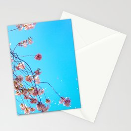 Sky is overrated. Stationery Cards