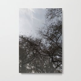An Afternoon in Nature Metal Print