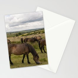Exmoor Ponies at Winsford Hill  Stationery Cards