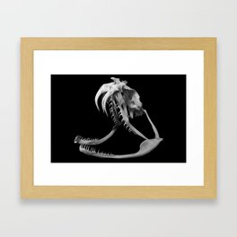 Gaboon Viper Skull 1 Lp Framed Art Print