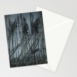 Fallen Trees After Storm Victoria February 2020 Möhne Forest dark Stationery Cards