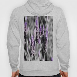 Lavender with selective colour Hoody
