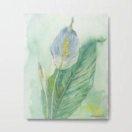 Peace Lily Metal Print