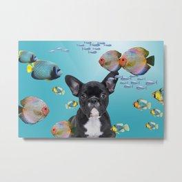 Tropic Fishes French Bulldog - Frenchie Metal Print