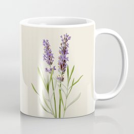 Lavender Antique Botanical Illustration Coffee Mug