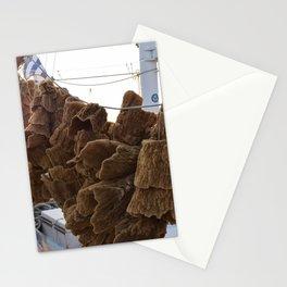 Sponges  Stationery Cards