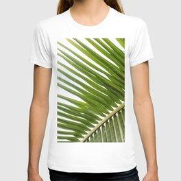 Green palm leaf close-up | Tropical art print | Travel photography T-shirt