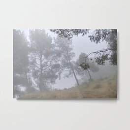 Wandering Into The Woods.. Sierra Nevada Metal Print