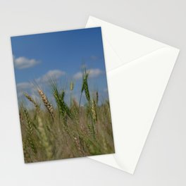 Grains Stationery Cards
