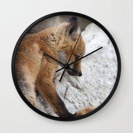 Watercolor Fox, Red Fox 18, Union Reservoir, Boulder Wall Clock