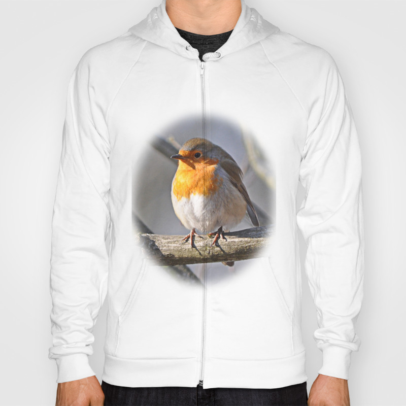 Robin Redbreast Hoody by Pirminnohr (SSR915575) photo