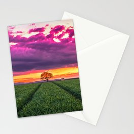 Lonely Tree On Meadow At Beautiful Evening Red Ultra HD Stationery Cards