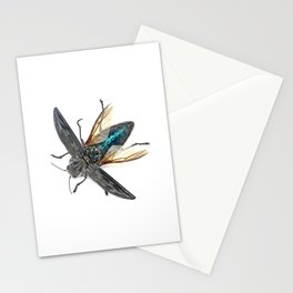 Sculpted Pine Borer (Chalcophora angulicollis) Stationery Cards