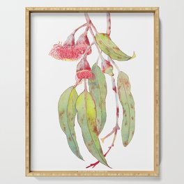 Flowering Silver Princess Eucalyptus Watercolour Serving Tray