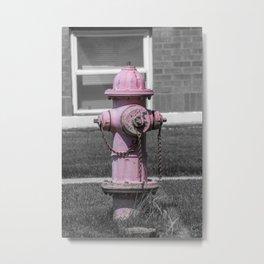 Faded Pink Mueller Super Centurion Fire Hydrant Sun Bleached Fireplug Metal Print