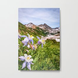 High Country Summer Wildflowers Crested Butte Colorado Mountain Landscape Metal Print