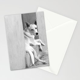 Perrito de pueblo Stationery Cards