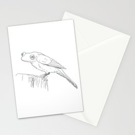 Frogbirb Stationery Cards