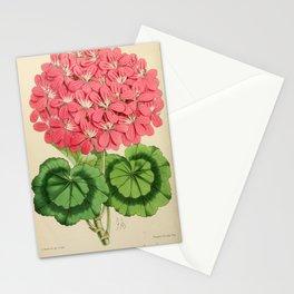Pelargonium Nosegay Emmeline Stationery Cards