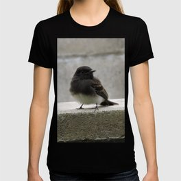 Young Black Phoebes T-shirt