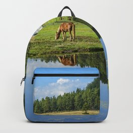 Colorado Country - 5404 Backpack