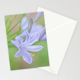 Simple Agapanthus Stationery Cards