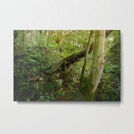 Enchanted Forest - Study III Metal Print