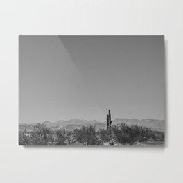 124   arizona Metal Print