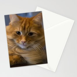 Ginger Fluff Stationery Cards