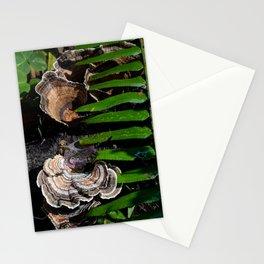 Shy mushrooms Stationery Cards