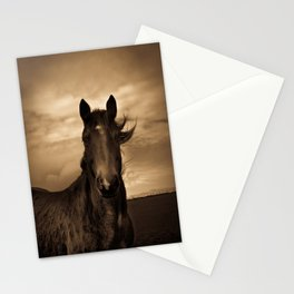 English horse in sepia tones Stationery Cards