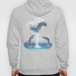 The Heart Of The Dolphins Hoody