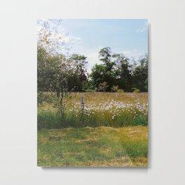 Field 3 Metal Print