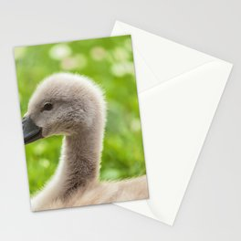 Baby Swan Stationery Cards
